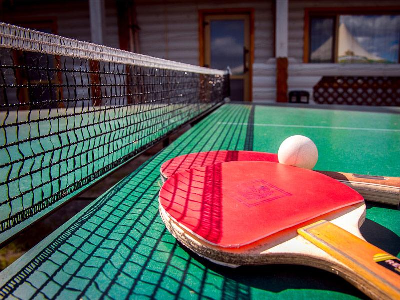 Обучение игры в настольный теннис с нуля — лучшие уроки и курсы
